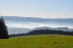 Nevelige bergen in het Zwarte Bos in Duitsland Royalty-vrije Stock Afbeelding