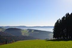 Nevelige bergen in het Zwarte Bos in Duitsland Stock Fotografie