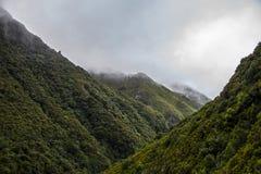Nevelige bergen van Rabacal in Madera Stock Afbeelding