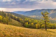 Nevelige de valleiwaaier van Autumn In Royalty-vrije Stock Foto