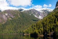 Nevelige Fjord, Alaska stock afbeelding