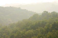 Nevelige groene heuvels Stock Afbeeldingen