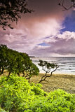 Nevelige Hana Beach bij Zonsopgang Royalty-vrije Stock Afbeelding