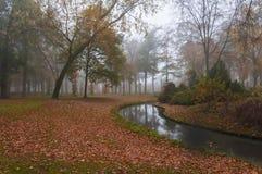 Nevelige kleurrijke de herfstpark en kreek Royalty-vrije Stock Foto