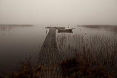 Nevelige ochtend door het meer Royalty-vrije Stock Foto
