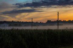 Nevelige ochtend het gebied Stock Foto
