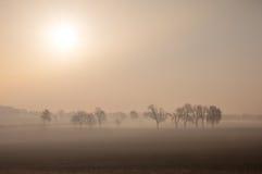 Nevelige ochtend met directe zonsopgang Royalty-vrije Stock Fotografie