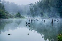 Nevelige ochtend op een kleine rivier in Rusland Stock Foto