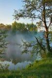 Nevelige ochtend op het meer Royalty-vrije Stock Foto's