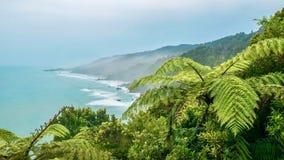 Nevelige ochtend op het Zuideneiland van Nieuw Zeeland stock afbeeldingen