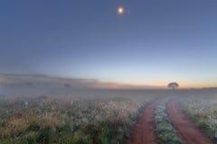 Nevelige ochtend vóór zonsopgang Stock Foto