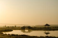 Nevelige ochtendmening door het meer op de prairie Stock Fotografie