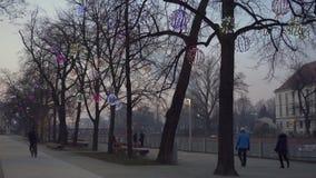 Nevelige promenade dichtbij Ostrow Tumski in Wroclaw stock videobeelden
