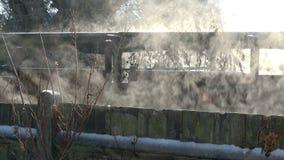 Nevelige zonnige ochtend stock footage