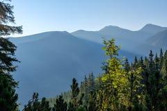 nevelige zonsopgang in Slowaakse Tatra-bergen met lichte stegen in F royalty-vrije stock afbeeldingen