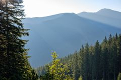 nevelige zonsopgang in Slowaakse Tatra-bergen met lichte stegen in F royalty-vrije stock foto