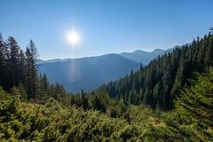 nevelige zonsopgang in Slowaakse Tatra-bergen met lichte stegen in F stock afbeeldingen