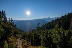 nevelige zonsopgang in Slowaakse Tatra-bergen met lichte stegen in F stock fotografie