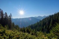 nevelige zonsopgang in Slowaakse Tatra-bergen met lichte stegen in F royalty-vrije stock fotografie