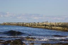 Nevelsk island. Sackalin island wievs ocean and hills royalty free stock image