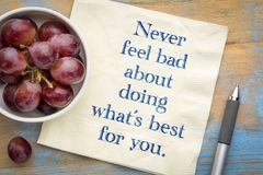 Never feel bad about doing what is best for you. Handwriting on a napkin with a bowl of grapes Stock Images
