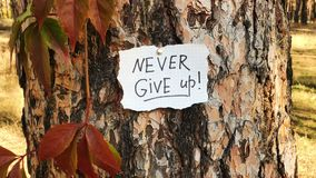 Never give up - card with lettering, motivation phrase