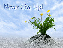 Never Give Up. Inspiring conceptual image with added quote Stock Image