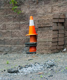 Never Give Up A Plant Versus Constrction Cones Stock Photography