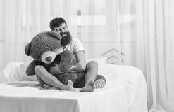 Never grow up concept. Guy on happy face hugs giant teddy bear. Man sits on bed and hugs big toy, white curtains on. Background. Macho with beard and mustache Stock Images