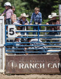 Never to Young. Some young cowboys and girls watch the action in a rodeo chute in Etna, California royalty free stock images