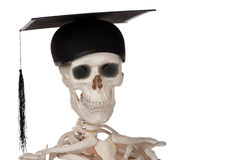 Never too late to graduate Royalty Free Stock Image