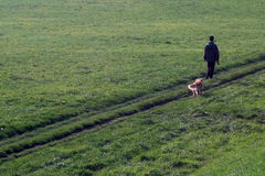 Never walk alone. Men and dog walk in the early morning Royalty Free Stock Image