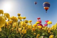 Neverland balon i kwiaty Fotografia Royalty Free