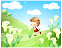 Neverland Story. Girl smelling flowers in the field Stock Images