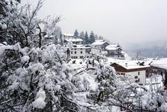 Nevicando in Forni Fotografia Stock