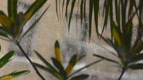Nevicando fuori della finestra della città stock footage
