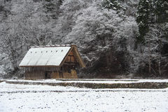 Nevicando nel Giappone Fotografie Stock