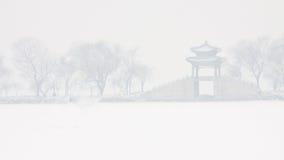 Nevicando nel palazzo di estate Immagine Stock Libera da Diritti