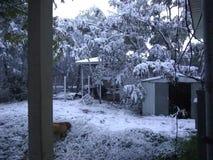 Nevicando nel tx di Corpus Christi fotografia stock