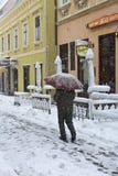 Nevicando nell'inverno Fotografie Stock Libere da Diritti