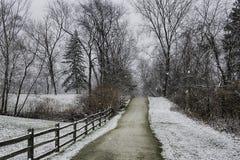 Nevicando nell'Ohio fotografia stock