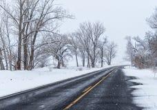 Nevicando sulla strada posteriore Immagine Stock