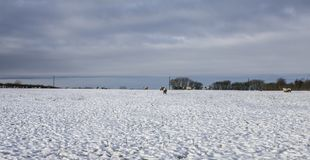 Nevicano nel Yorkshire, l'inverno 2017 - i cieli blu Immagine Stock Libera da Diritti