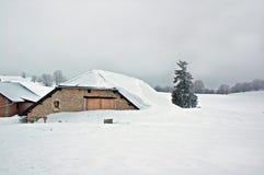 Nevicare-sotto. Fotografia Stock Libera da Diritti