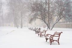 Nevicata Fotografie Stock Libere da Diritti