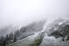 Nevicata della neve del paesaggio dello snView del paesaggio di vista coperta sull'albero alpino in cima alla montagna nel parco  Fotografie Stock