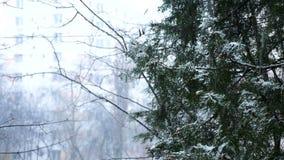 Nevicata e rainning allo stesso tempo archivi video
