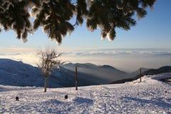 Nevicato Fotografia Stock Libera da Diritti