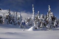 Parcheggio Snowbound con il segnale stradale Fotografie Stock