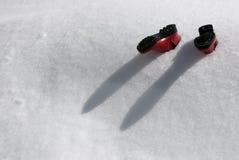 Nevicato sotto fotografia stock libera da diritti